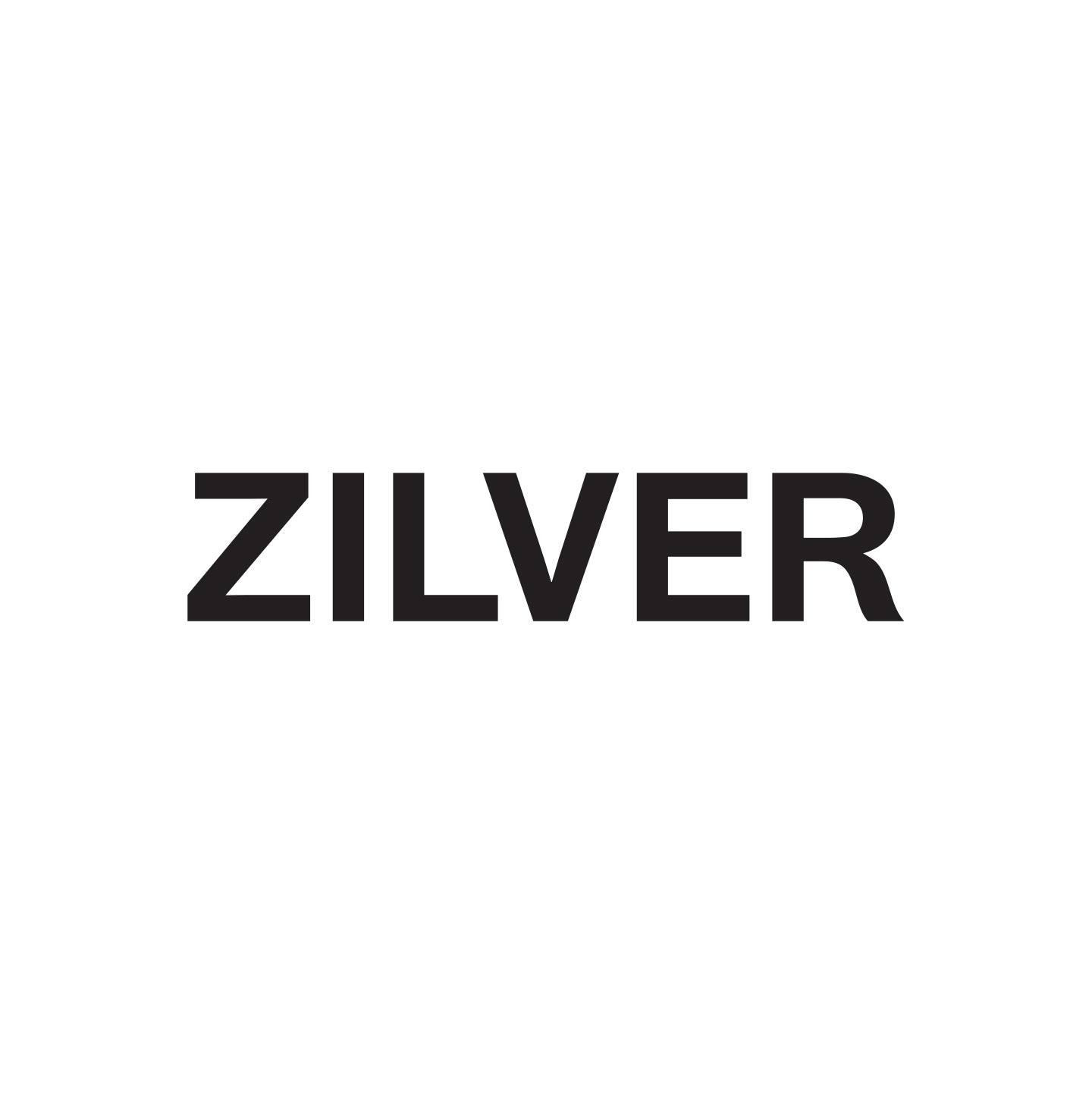 logo zilver