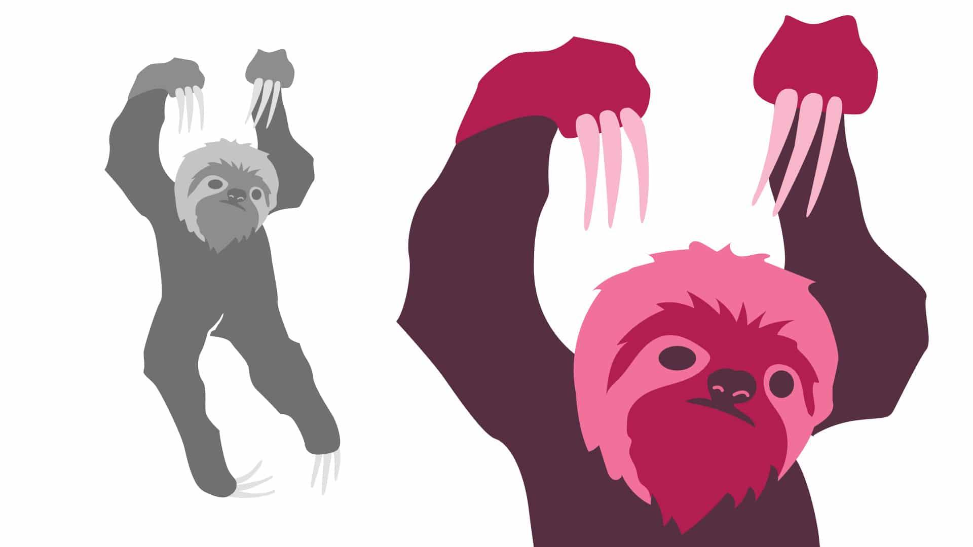 04 grafico milano logotype bradipo dischi