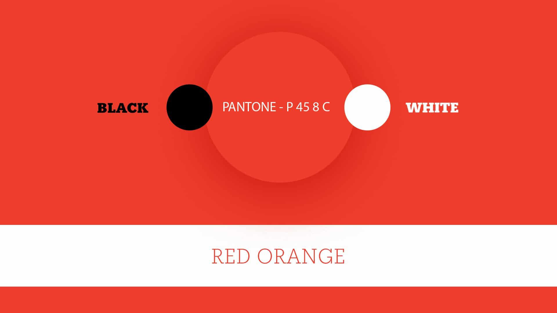 06 grafico milano colors bradipo dischi
